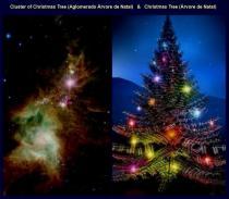 Imagem retirada do grupo de Astronomia, de Francisco Gomes