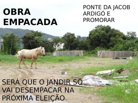 EMPACADA JACOB ARDIGO