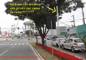 radar-ou-arvore